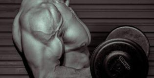 Podstawy budowania masy mięśniowej